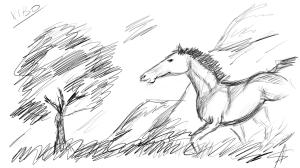 Лошадь Wacom